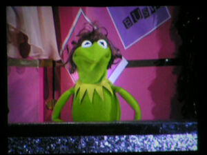 HollywoodBowl-Kermit-as-SonnyBono-2006-09-15