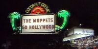 Die Muppets in Hollywood