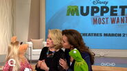 Qvc joan rivers piggy truce 1