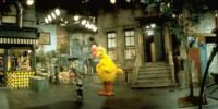 Sesame Street (location)