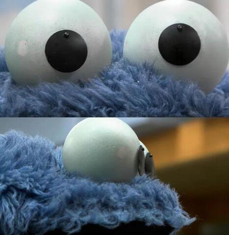 File:Cookie eyes closeup 2.jpg