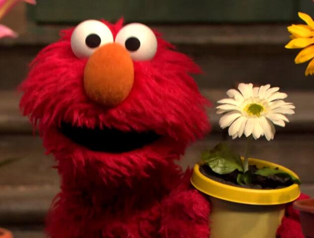 File:Elmo-2013.jpg