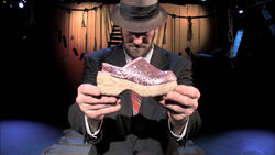 MrShoe