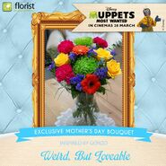 Iflorist gonzo mothers day