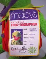 Frogtog4