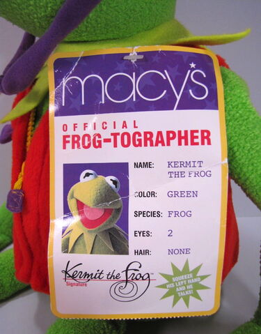 File:Frogtog4.jpg
