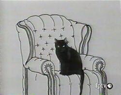 Word.CAT-2