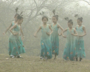 File:Peacockdancers.jpg