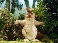 Totem bunny 01
