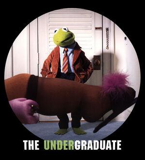 Undergraduate