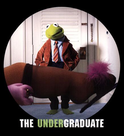 File:Undergraduate.jpg