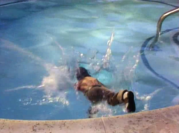 File:Gonzo in water - Miss Piggy's Hollywood.jpg