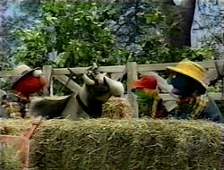 Elmo-CowStory
