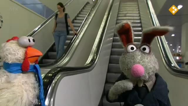 File:Angsthaas&Stuntkip - Korneel Evers - escalator.jpg