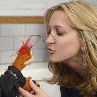 Kiss Lara Spencer Pepe