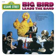 Album.bigbirdband