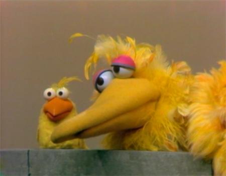 File:Big&LittleBirds.jpg