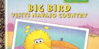 Big Bird Visits Navajo Country