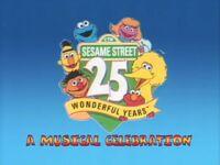 Sesame Street: 25 Wonderful Years
