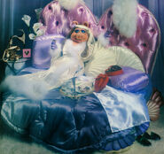 The Miss Piggy Calendar 1980