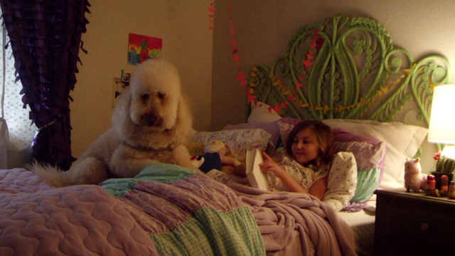 File:4732-DogFilm.png