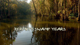 Title.swampyears