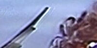 Benny (Muppet Show)