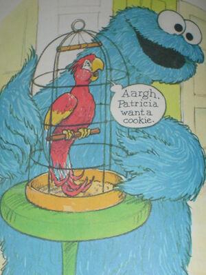 Patriciatheparrot