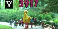 Episode 3917