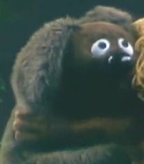 File:2nd rowlf.png