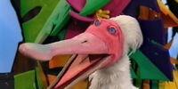 Julius the Spoonbill