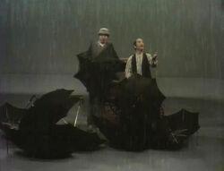 Wallyralphumbrellas