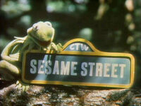 Kermit1201