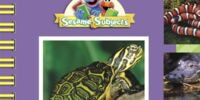 My First Book About Reptiles