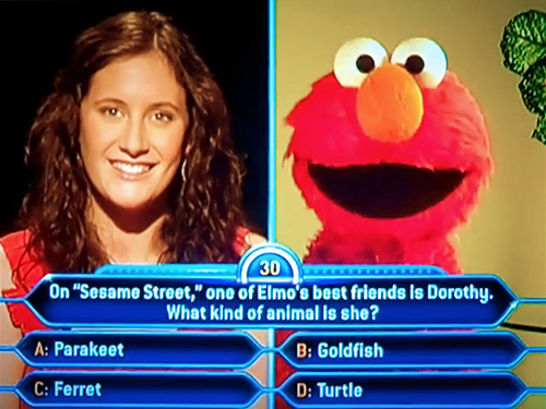 File:Elmo-on-Millionaire.jpg