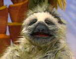 Episode 115: Giraffe & Sloth