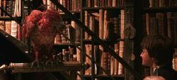 Chamber of secrets phoenix