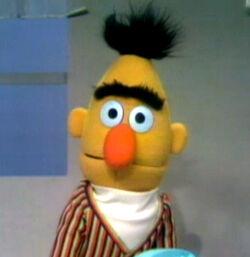 Bert1971-1976version