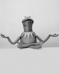 SüddeutscheZeitung-Kermit-06-MessageOfAdviceForGrownUps