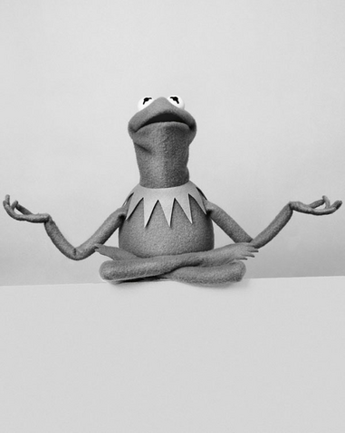 File:SüddeutscheZeitung-Kermit-06-MessageOfAdviceForGrownUps.png