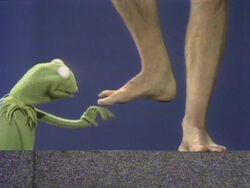 Kermit feet