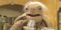 Jeremiah Tortoise