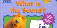 What Is the Sound?