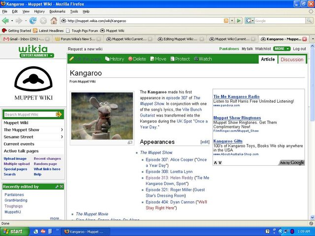 File:Kangaroo 1024x768 200px.jpg