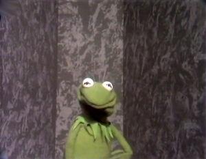 KermitLectureWall