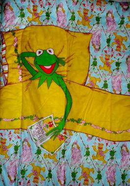 Sleeping bag kermit
