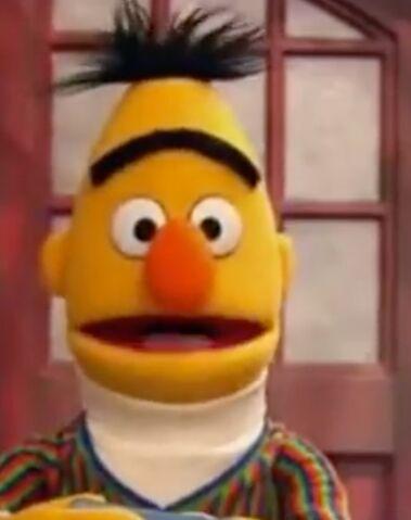 File:Bert 2013.jpeg