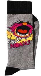 Littlewoods socks animal 2