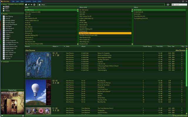 File:MusicBeeDarkerGrassSS.jpg