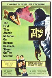 Thefly1958